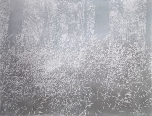 "Mila Libman, Wild Oats, 2016, dry pigment on paper, 55"" x 74"""
